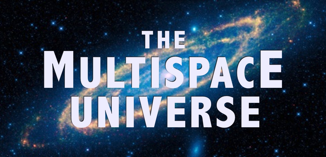 New Paradigm of Reality:  <br />The Multispace Universe
